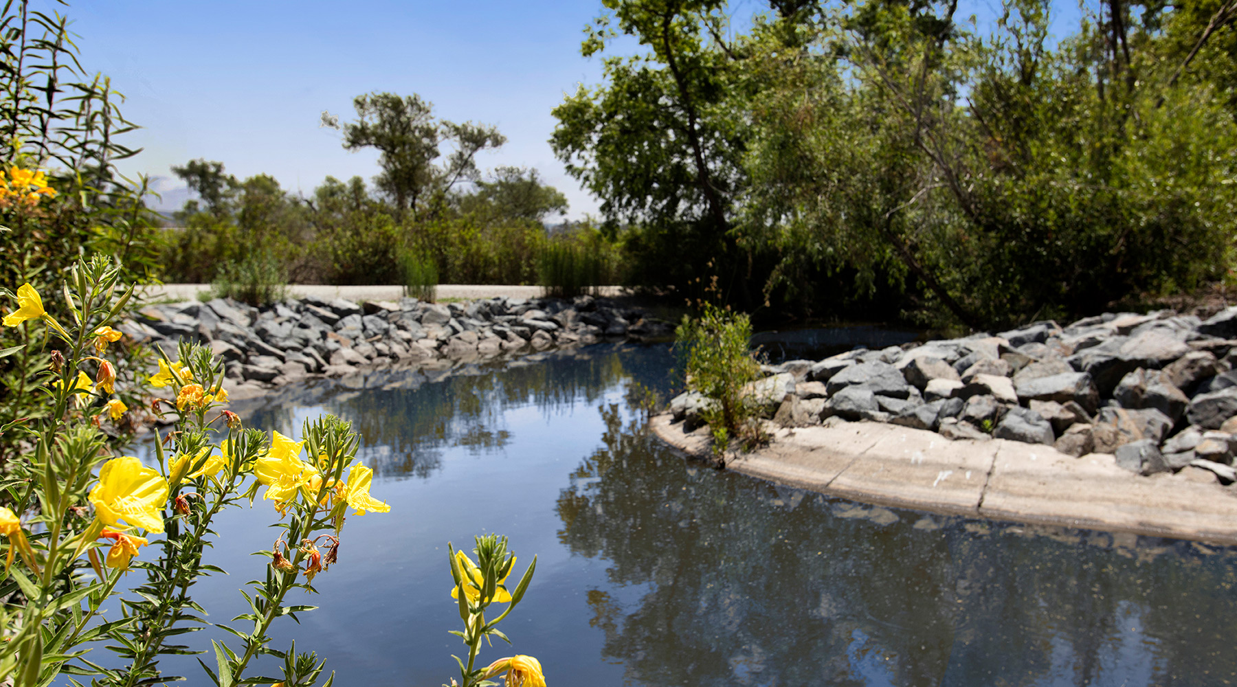 The Royce - Irvine Nature Preserve Hiking and Biking